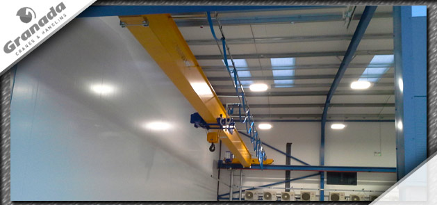 Case study 1 body image of a single girder crane with undersling wire rope hoist with block and hook